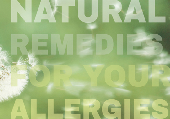 Natural Remedies to Compliment Your Current Allergy Regimen